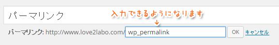 wp_permalink_02